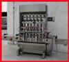 HTG-08ASF Automatic Filling machine